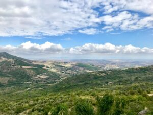 Panorama Bovino - by Trawellit